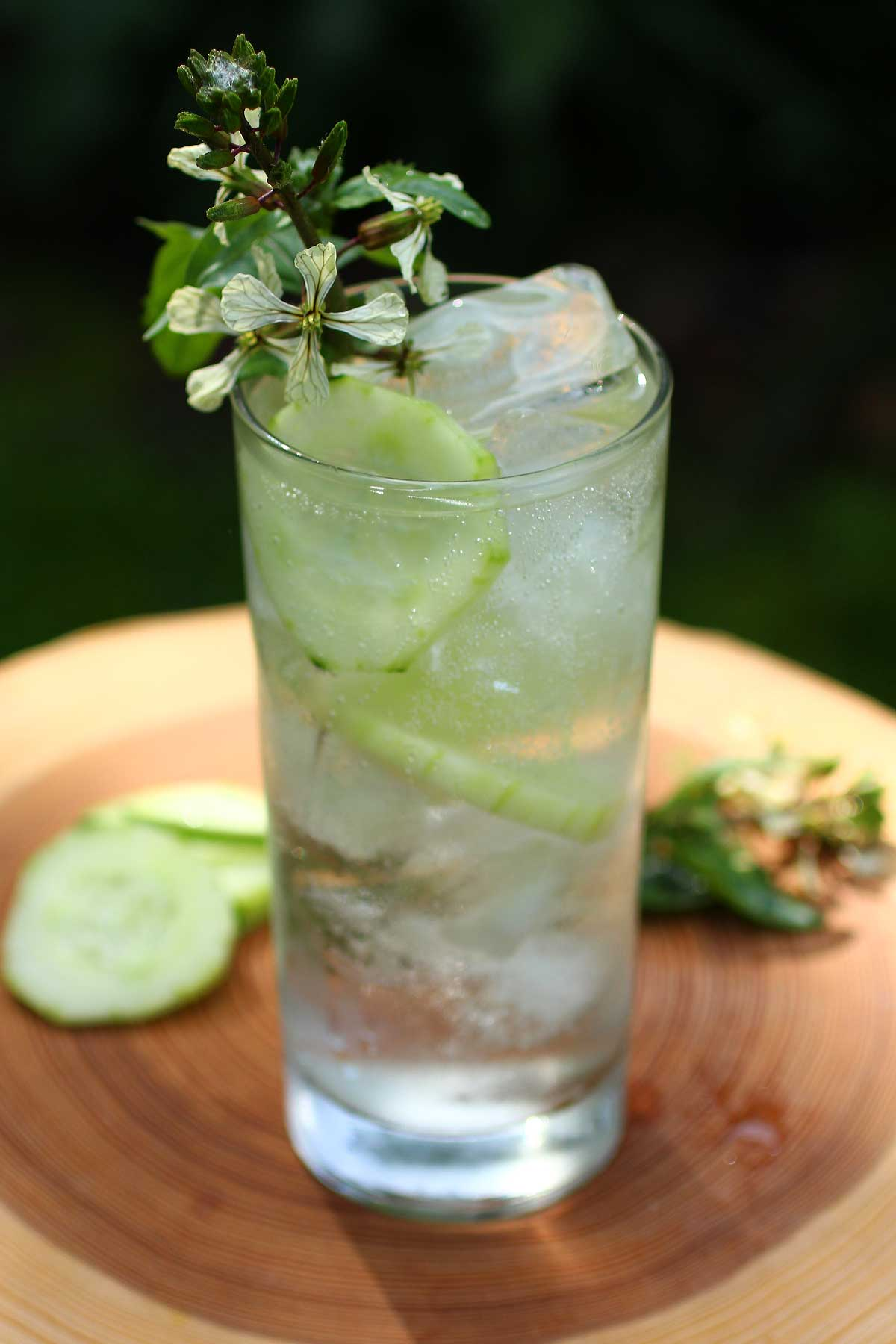 ... began with the large aloha cucumber spritzer cucumber gin spritzer