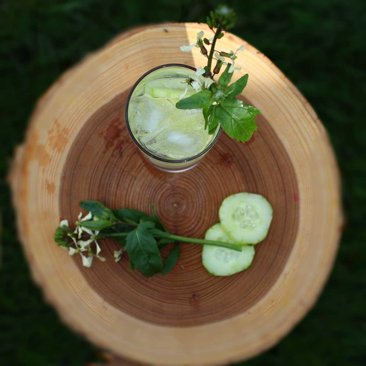 Cucumber White Wine Sangria Spritzer - Recipe Fiction
