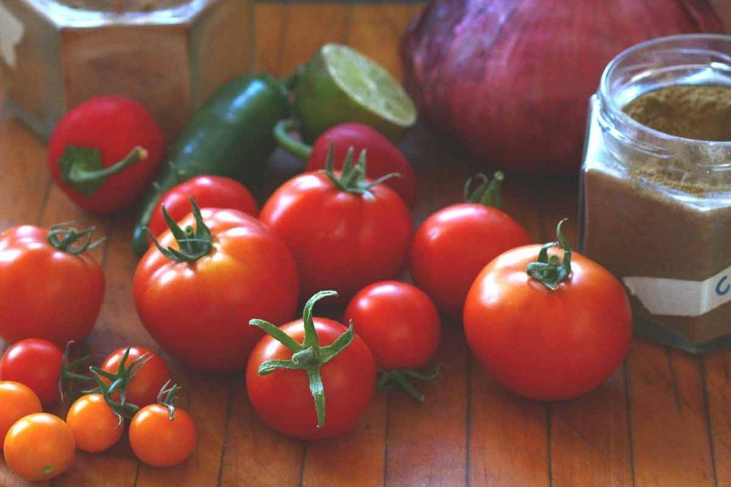 Fresh Tomato Salsa Recipe — Dishmaps